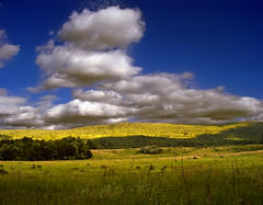 Shaded (Nicholas_T) Tags: sky cloud nature field clouds rural landscape newjersey spring meadow hills creativecommons appalachianmountains stratocumulus kittatinnymountain sussexcounty walpack delawarewatergapnationalrecreationarea 123nj wallpack