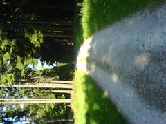 DSC01420 (_macmenace_) Tags: feldberg zum bikeroute kleinen
