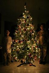 Navidad 2005 (netwalker100) Tags: christmas holiday familia mexico arbol navidad personas celebration queretaro vacaciones familiares hijos arreglar quertaro arreglos festejo