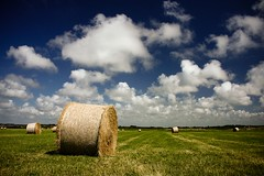 hey hay! (Mace2000) Tags: summer nature clouds landscape denmark 350d natur harvest blogged hay scandinavia polarized bale landschaft cloudjunkie dansk payitforward 4aces 1000v 2for2 mace2000 img3526 countryscenery