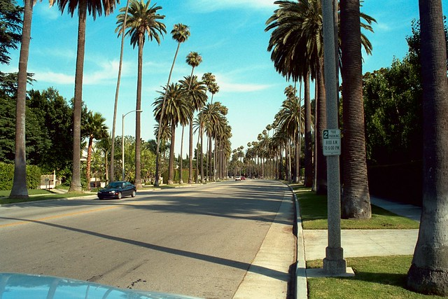 A street with palm trees in Beverly Hills