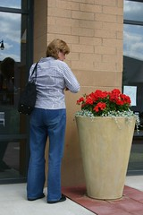 lady stealing flowers