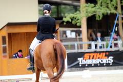 IMG_1000 (dreiwn) Tags: horse pony pferde pferd equestrian horseback reiten horseriding dressage hnger 2015 reitturnier dressur pferdekopf dressuur junioren ridingarena pferdesport doublebridle reitplatz reitverein pferdehnger kandare turnierreiten dressurprfung ldressur
