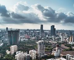 Mumbai Blue