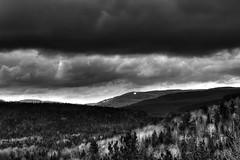 Dark Wood. (maximebozz) Tags: wood canada dark noiretblanc paysage fort orage