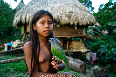 Embera Indians (juli_aristizabal_duran89) Tags: poverty travel portrait pet pets cute expedition nature girl animal animals forest naked children outdoors nationalpark clothing rainforest eyecontact village child looking natural wildlife indian traditions parrot fresh adventure exotic american jungle watershed latin indians panama migration darien embera exposed indigenous centralamerica ecosystem remaining dialect trained puru chagres chagresriver cayuco latinamericanandhispanicethnicity chagresnationalpark soberanianationalpark lakegatun changres preadolescentchild ethnia spiritualmedicine panamenian isoleted tusipono emberacommunity precolombiancultures tusiponoemberacommunity