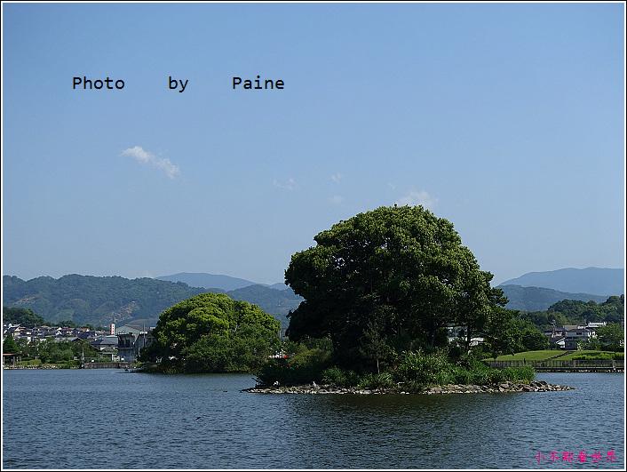 和歌山大池遊園-平池綠地公園 (19).JPG