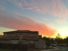 A_sunset_at_Evergreen2 (andy2k27) Tags: