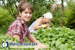 Do you want younger, firmer skin? (wellnessreset) Tags: beauty skin glimpse luminescence wellness mangosteen xango skincare beautycare xanthones wellnessreset