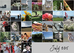 July 2015 mosaic (keepps) Tags: mosaic month bighugelabs