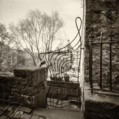The Gate (Graeme Pow) Tags: pinhole zeroimage zero2000 camera film fp4 ilford edinburgh deanvillage scotland gate wroughtiron