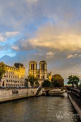 Notre Dame (natur'EL photos eric leroy) Tags: parisnotre damemonumentscathédrale cadenats pontdesarts