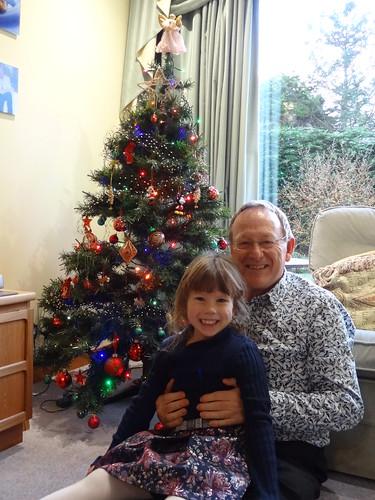 Decorating the Christmas Tree - 16 (8)