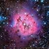 IC5146 Cocoon Nebula Close Up (Roberto Capacci) Tags: ic5146 cocoon nebula celestron c11 moravian ccd lrgb