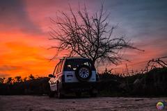 (juliphotoo) Tags: atardecer camino coche car sunset naturaleza nature españa explore explorar best felicidad camera arte fotografo oaisaje paisaje photo red rojo blue azul contraluz