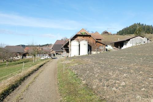 Ried Zollbrück