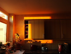 Shadows and warmth... dawn light on the open door of my kitchen cupboard... (Sue - happy sparrow) Tags: kitchen kettle microwave plant toaster sink dawn light trowel portland dorset radio