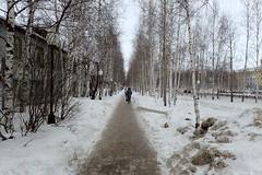 Trottoir à Нефтеюганск (8pl) Tags: ville hiver russie trottoir нефтеюганск sibérie arbres bouleaux piétons glace bâtiment route froid perspective lignedroite lampadaires éclairagepublic jour