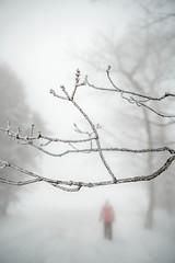 sunday-3108 (FarFlungTravels) Tags: winter ski skiing laurelhighlands pennsylvania reservoir morning sunrise foggy snow squall