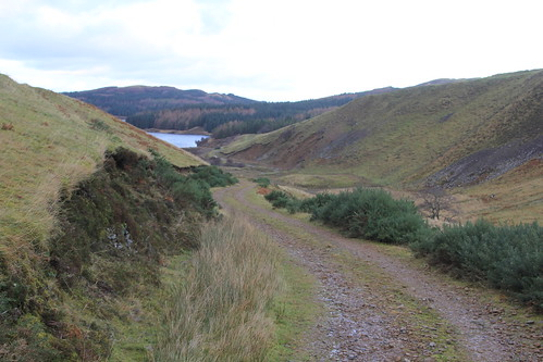 Highland Track, Scotland.