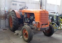 Fiat 80 R (samestorici) Tags: trattoredepoca oldtimertraktor tractorvintage tracteurantique trattoristorici oldtractor