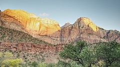 Golden Morning (Herculeus.) Tags: 2016 beehives bouldersstonerocks cliffs country day evergreens landscape mountains oct outdoor outdoors outside rockwall trees ut zionnp rockformation rock