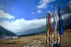 Yumthang valley (atulgoyalmaverick) Tags: northeastindia sikkim northsikkim yumthang prayerflags landscape