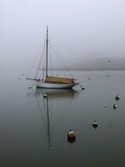 {Misty morning) 163