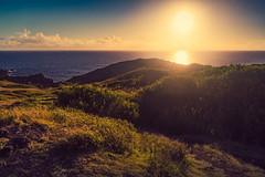 Setting Sun at Nakalele Blowhole (Fresh Perspective with a Twist) Tags: ocean sunset clouds landscape hawaii lava rocks maui vegetation