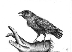 """Freedom"" (twiing) Tags: bird love freedom 1 sketch women hand sketching dream"