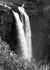 A Hidden Message (~~J) Tags: waterfall water monochrome snoqualmiefalls winter rainy fog