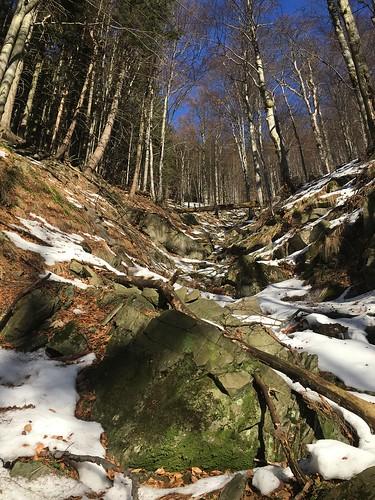 Lysá prales a ledopád Mazák