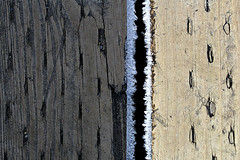Made in the Shade (Doris Burfind) Tags: abstract between step ice icecrystals shade wood texture 2x12