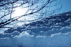 Neige snow La Ferte Bernard branches - atana studio (Anthony SJOURN) Tags: neige snow la ferte bernard branches atana studio anthony sjourn