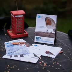 Phone a Friend (jayneboo) Tags: rspbbirdwatch 365 garden feeders birds counting