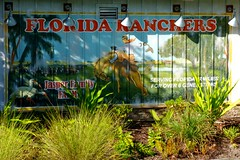 Disney Springs,Orlando FL (Rusty Clark) Tags: postcard ranchers horse bronco cowboy