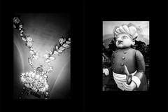 (赤いミルク) Tags: diptych grain vignette 雙聯 二部作 triptych black romantism gothic コントラスト 赤 red ウォール wall ゴースト 悪魔 ghost 雪 snow 友人 friends ドア doors 肖像画 portrait 贈り物 gift 手 hand 地平線 horizon monochrome モノクローム 暗い blackandwhite abstract minimalism room background texture picture frame surreal indoor text photo border depth field night serene blackbackground