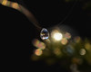 Suspended (FocusPocus Photography) Tags: tropfen wassertropfen drop droplet water rain regentropfen bokeh