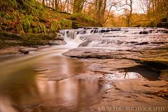 Holywell Dene (sidrog28) Tags: water autumn holywell coast newcastle trees river lake dene rock waterfall