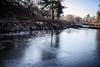 bradgate park - frozen river (grahamdale74) Tags: xmas 2016 alyssia caitlin chel roy joan wetlands