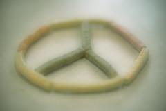 Whimsical Thought: World Peace (C. VanHook (vanhookc)) Tags: peace whimsical justthinking wishingthoughts positivity week42017 52weeksthe2017edition weekstartingsundayjanuary222017 inevitable strawsnacks veggiesnacks
