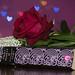 330 Romance