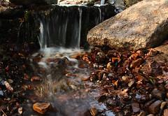 Waterfall @ Yuengling Park (2bmolar) Tags: waterfall odc pottsville schuylkillcounty yuenglingpark