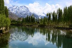 Pani ko choo rahi ho jhuk jhuk k Gul ki Tehni - (NotMicroButSoft (Fallen in Love with Ghizar, GB)) Tags: pakistan nature river sater ghizar phandar gilgitbaltistan