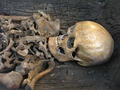 Museum Vlaardingen: Vlaardingse Boomstamkist man (Channah Sees The World) Tags: man museum skeleton archeology kano vlaardingen archeologie skelet vondst kanoman bodemvondst