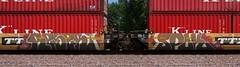 Reser/Spok (quiet-silence) Tags: railroad art train graffiti railcar etc graff freight ttx spok fr8 intermodal reser wellcar dttx744555