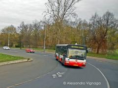 Renault Agora #3377 - linea 143 (AlebusITALIA) Tags: bus prague tram praha praga renault publictransport autobus tramway dpp tatra tpl irisbus sorbus trasporti repubblicaceca mobilit trasportipubblici irisbusagora solarisurbino renaultagora skoda15t dppraha dpprague dppraga