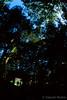walk out of the back gate (Takeshi Nishio) Tags: uv 人物 nikonfm3a ポジ ei100 フィルム 16mmfisheye fujiprovia100frdpiii filmno793