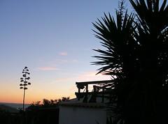 GF407 (molarinho29) Tags: praia beach portugal nature island natureza algarve ilha olhão armona