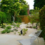 Tiny Stanmore gravel garden, soon after planting